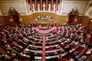 vote de la loi pinel